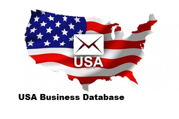 New York Business Database